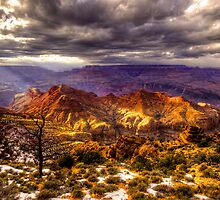 East of the Canyon by Rob Hawkins