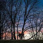 Deer on a Hill by Thliii