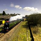 Tangmere at Seaton Junction by Rob Hawkins
