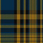 00702 Agincourt Fashion Tartan Fabric Print Iphone Case by Detnecs2013