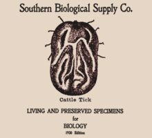 Biological supply catalog 1930 by CircaWhat