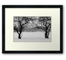 Through The Snow And To The Castle Framed Print