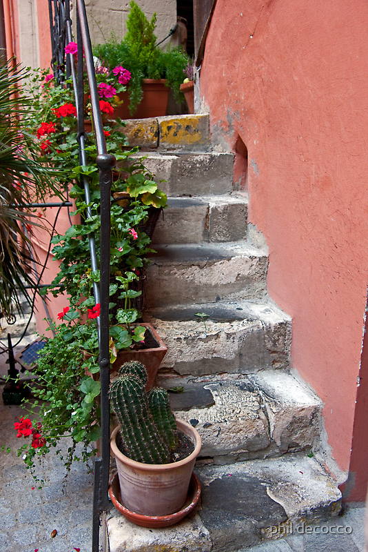 Stone Steps Worn by phil decocco