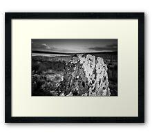Standing stone at Achavanich, Caithness, Scotland Framed Print