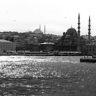 Golden Horn by Burcin Cem Arabacioglu