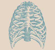 Skeleton rib cage - blue by adrienne75