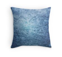 Frozen windscreen Throw Pillow
