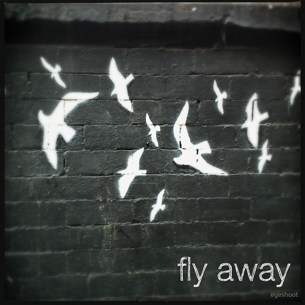 Fly Away by eyeshoot