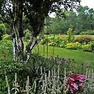 The Beautiful Gardens at Skylands Manor, Ringwood NJ by Jane Neill-Hancock
