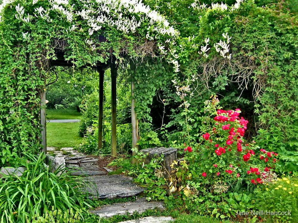 Garden Arbor at the New Jersey Botanical Garden by Jane Neill-Hancock