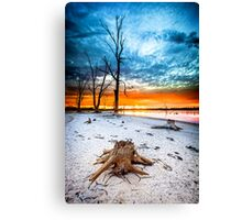 Stump at Kings Billabong Canvas Print