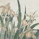 Iris Flowers and Grasshopper, c.1830-31 by Bridgeman Art Library