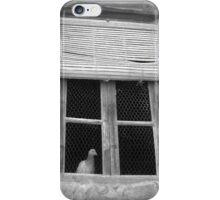 palomar iPhone Case/Skin