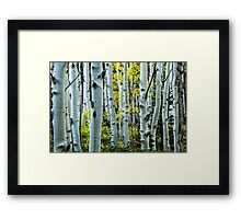 The Maze Of Fall Framed Print