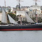 Sailing by The Star of India, San Diego by seeingred13