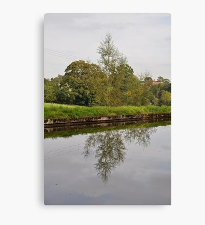 Tree Mirror Image 1  Canvas Print