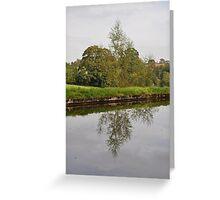 Tree Mirror Image 1  Greeting Card