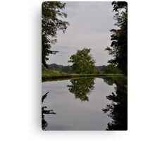 Tree Mirror Image 2 Canvas Print