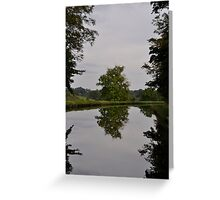Tree Mirror Image 2 Greeting Card