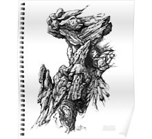Rock Facade - Sketch Pen & Ink Illustration Art Poster