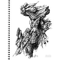 Rock Facade - Sketch Pen & Ink Illustration Art Photographic Print