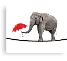Elephant on a tightrope Canvas Print