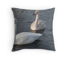 3 Swans a Swimming Throw Pillow