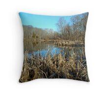 Perkiomen Creek Green Lane Recreational Area - Pennsylvania Throw Pillow