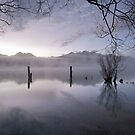 Old Jetty Remains, Kinloch NZ by Odille Esmonde-Morgan
