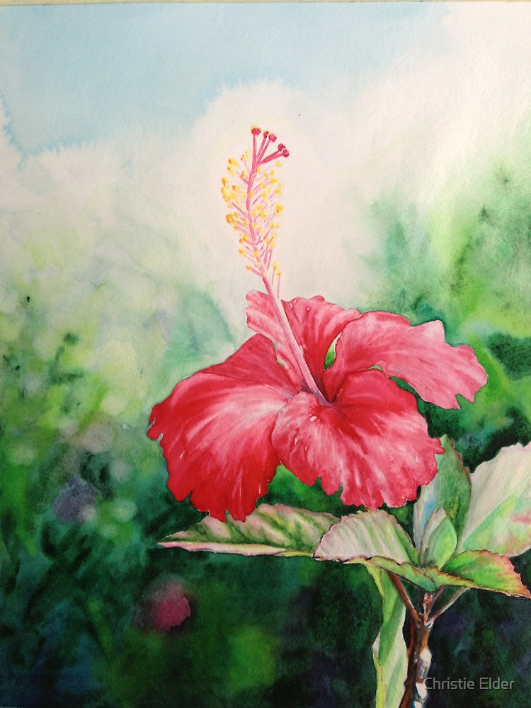 """""""Aloha"""" Tropical Red Hibiscus Hawaiian Flower Painting by Christie Marie Elder-Ussher by Christie Elder"""