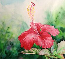 """Aloha"" Tropical Red Hibiscus Hawaiian Flower Painting by Christie Marie Elder-Ussher by Christie Elder"