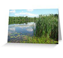 Green Lane Open Space Recreation Area - Pennsylvania Greeting Card