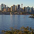 Sydney Greets the Early Morning Sun by TonyCrehan