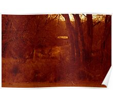 Red Dawn Light Poster