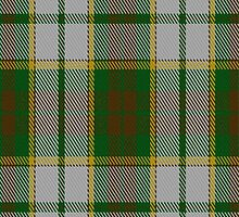 00741 Aviermore Check Fashion Tartan Fabric Print Iphone Case  by Detnecs2013