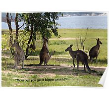 Bigger pouch mom Poster