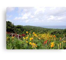 Jamaica Plantation Canvas Print