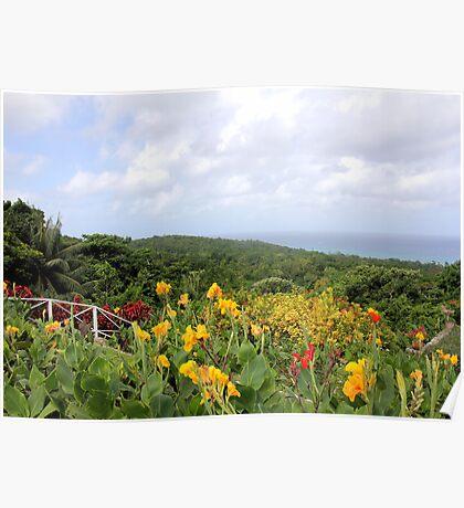 Jamaica Plantation Poster