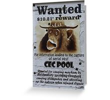 CEC POOL Greeting Card