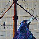 'Birds out back.' by Cat Leonard