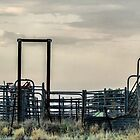 cattle yards by outbacksnaps