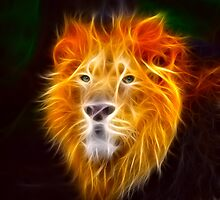 Fiery Lion by Norma Cornes