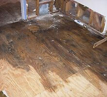 water damage restoration  orlando by addieturner62