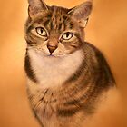 Cat Portrait by Peter Skillen
