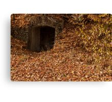 hobbit house Canvas Print