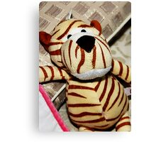 My Niece's Tiger Stuff toy Canvas Print