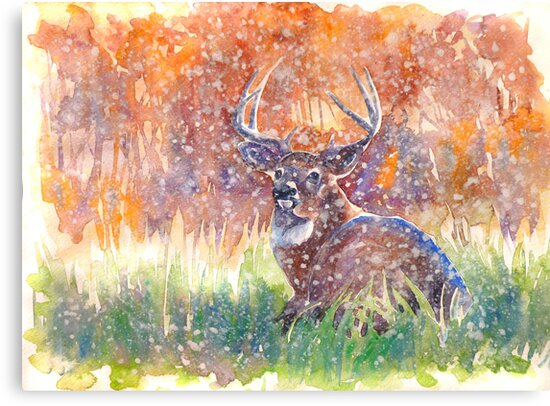 a stag in Winter by Gill Bustamante