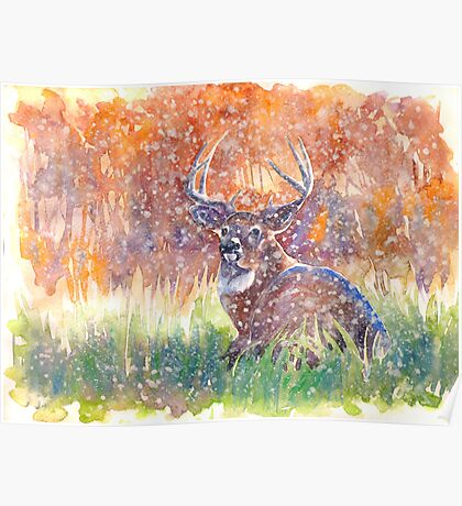 a stag in Winter Poster