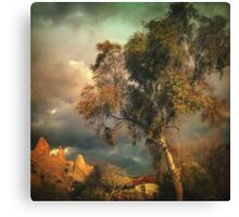 Tree of Confusion Canvas Print