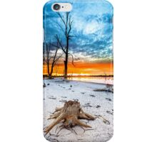 Stump at Kings Billabong iPhone Case/Skin